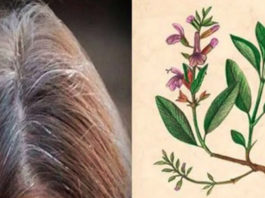 Вы больше не будете покупать краску для волос, когда узнаете эти 5 рецептов для окрашивания седых волос!