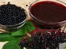 Кисель из бузины пила — и снова ожила! Напиток жизни из ягод черной бузины — настоящий клад!