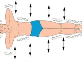 5 полезных упражнений от зажимов спины и для здоровья позвоночника