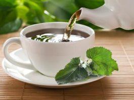 Чай из листьев шелковицы имеет в 22 раза больше кальция, чем коровье молоко