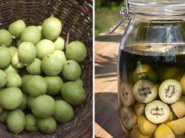 Полезная настойка из зеленых грецких орехов — уникальное лекарство от тяжелых болезней. Простое, но бесценное средство