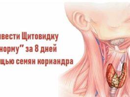 Привести Щитовидку в ″норму″ за 8 дней с помощью семян кориандра